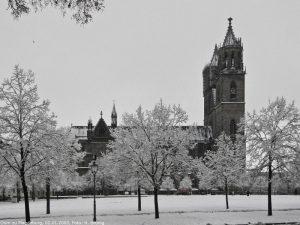 Stadt Magdeburg -Magdeburger Dom im Winter